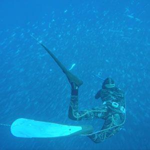 Freediving/Spearfishing Gear